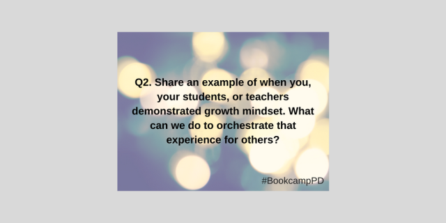 Bookcamppd Q2